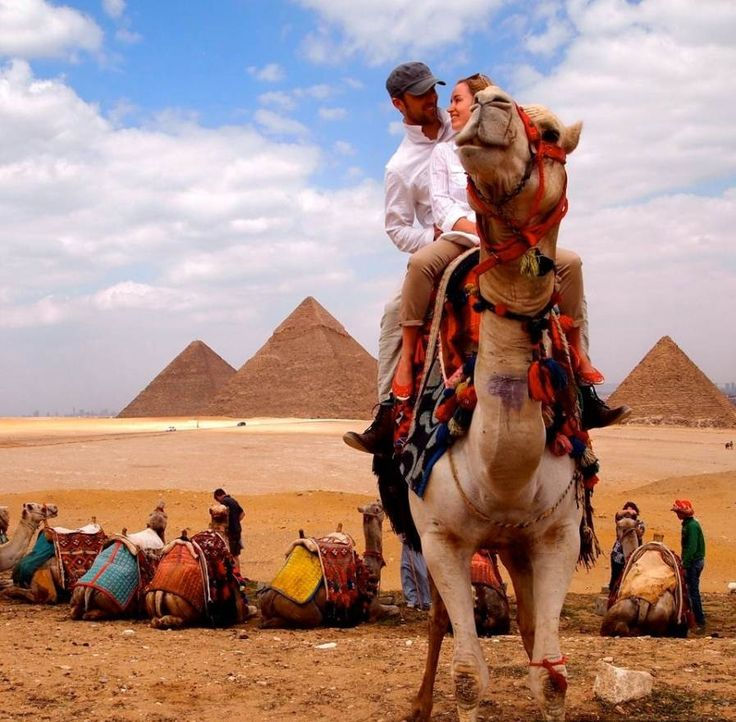 Egypt Travel Packages | Egypt Tour Packages | Cairo and Alexandria Travel Packages  Enjoy 4 nights tour package to Cairo & Alexandria with #Egypt_Tours_Portal #Travel #Egypt