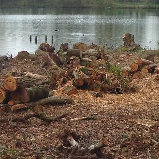 Again the logs...