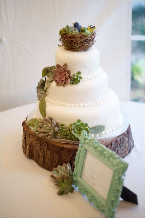 wedding cake with birds 1000 ideas about succulent wedding cakes on 26824