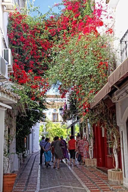 El Casco Antiguo de Marbella es uno de los más bellos de Andalucía. Zona magníficamente conservada con callejuelas blancas y balcones floreados