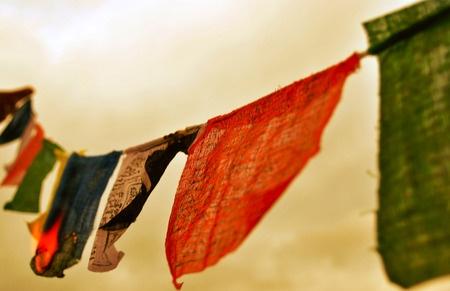 1950-2012 Troppa sofferenza taciuta su volti prima sereni. Troppo sangue versato su suoli sacri. Troppi uomini in fiamme. Che dalle loro ceneri possa nascere un barlume di speranza. Che da quei suoli possa levarsi il suono di un canto libero. Che da quei volti dignitosi possa risorgere un sorriso. Che il Tibet possa tornare un Paese libero dall'oppressione cinese.  #ij12 #webismobile http://bit.ly/xKDi7G