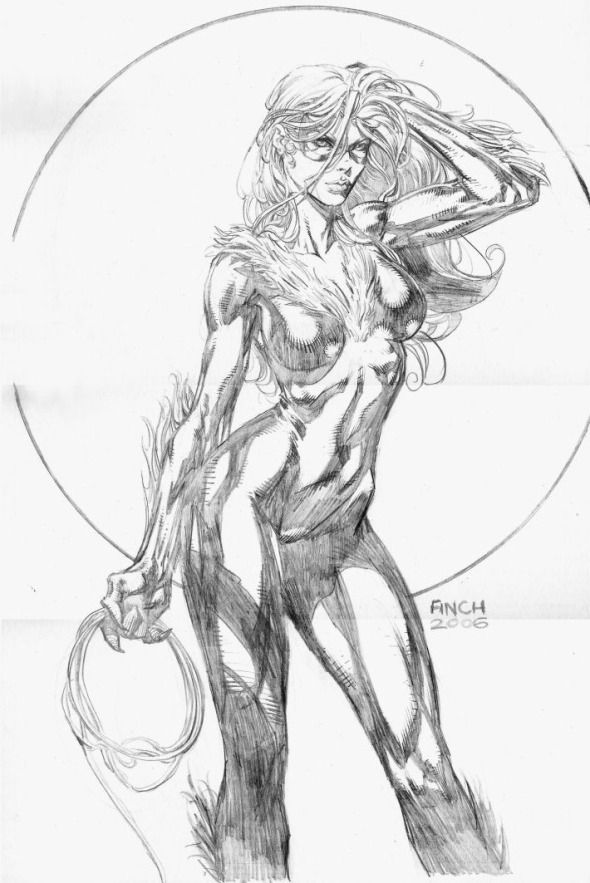 david-finch-pencils-black-cat-1232.jpg (590×883)