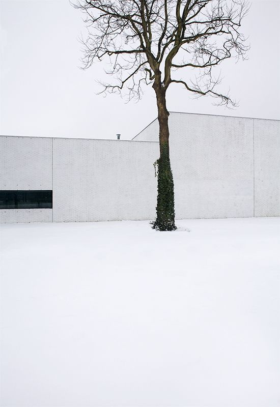 The White House - photos by Patrick van Dam