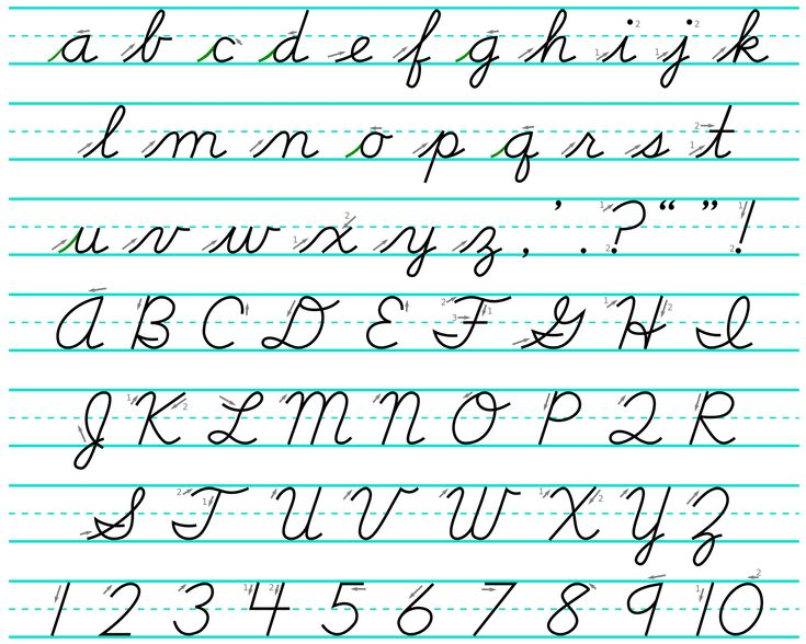 Worksheets Script Alphabet For Kids 1000 images about fonts on pinterest script lettering dnealian a cursive alphabet lower case and upper
