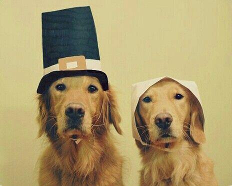 Happy Thanksgiving :)
