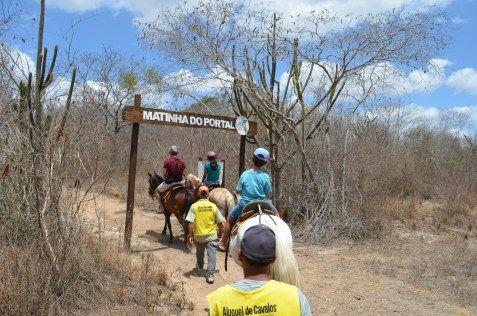 No Hotel Fazenda Portal de Gravatá há uma área preservada de Caatinga onde é possível fazer trilha e andar de cavalo. Também há placas indicativas de espécies desse bioma que só existe no Brasil.