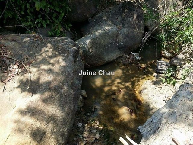 Agricultural Land for Sale in Raub for RM 6,664,000 by Juine Chau