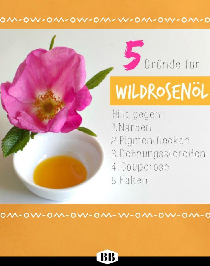 Wildrosenöl wirkt effektiv gegen  ➭ Falten ✔  Dehnungsstreifen ✔ Narben ✔ Unreine Haut & Akne ✔  Pigmentflecken ✔ #unreinehaut #akne #pickel #wildrosenöl #trockenehaut #narben #pai #haut #hautpflege