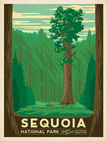 National Parks designs | Sequoia National Park poster by Anderson Design Group .