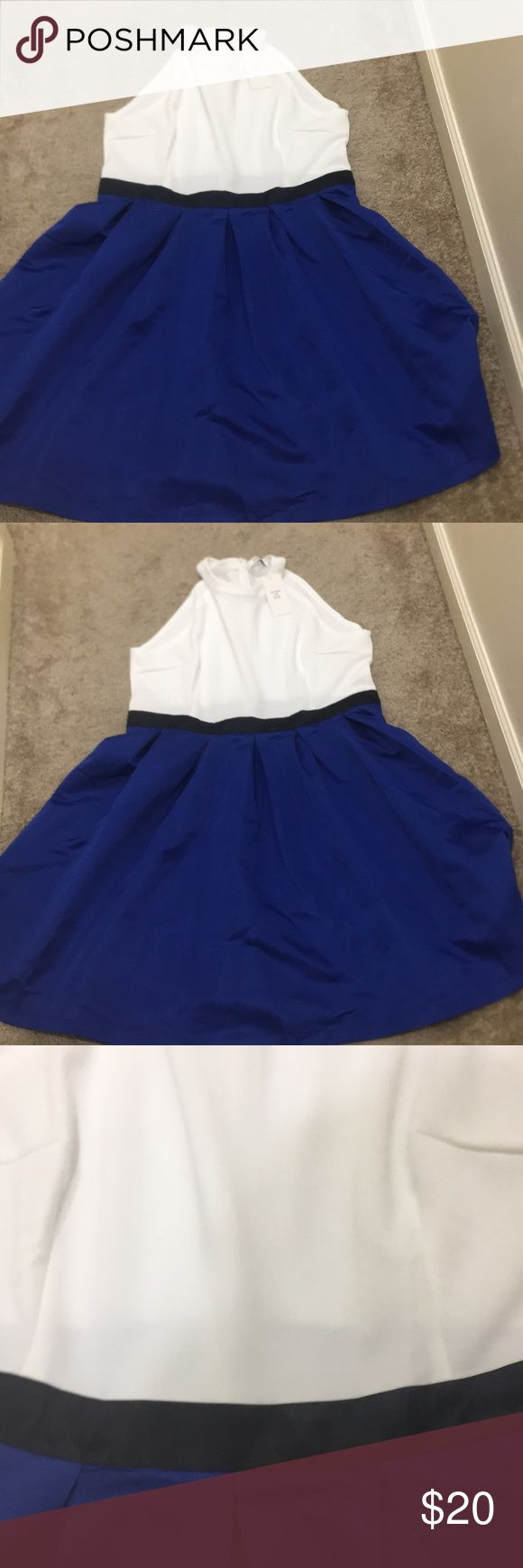 4x PLUS SIZE DRESS WORK FLOWY WHITE ROYAL BLUE NEW New STYLE LONDON Dresses Midi