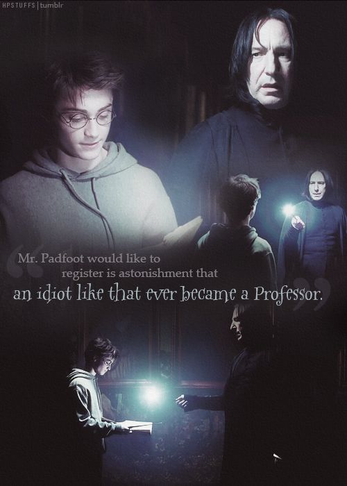 """""""Mr. Padfoot would like to register his astonishment that an idiot like that ever became a professor."""""""