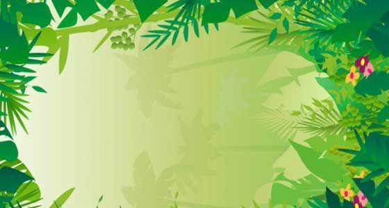 free jungle border clipart - photo #36