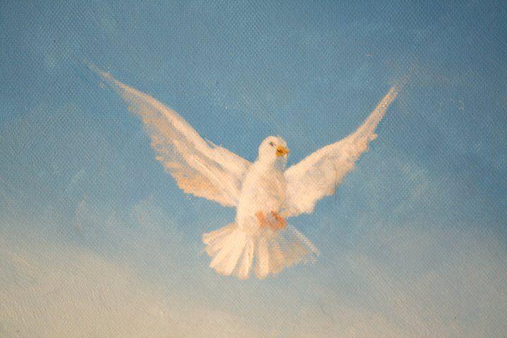 """Particolare colomba dal dipinto """"presentazione al tempio"""" di Pasquale Scognamiglio - Montalto Uffugo (Cz)"""