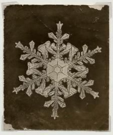 Wilson A. Bentley became the first person to photograph a single snow crystal in 1885