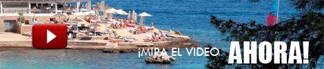 Vinos Mallorca | Todo sobre Mallorca