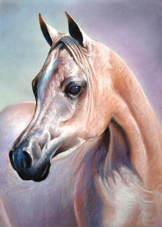 17 Best images about Arabian Horse Art on Pinterest ...