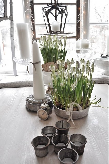 Simple. Galvanized metal with vertical flowering bulbs. Candles.