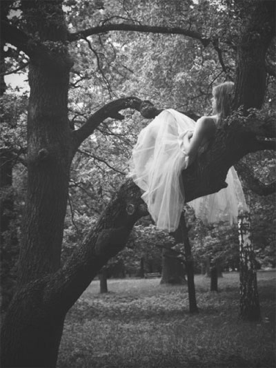 angles, expressive.: Fairies Tal, Photo Ideas, Dreams, Alice In Wonderland, Book, Trees Branches, Bride, Wedding Pictures, The Dresses