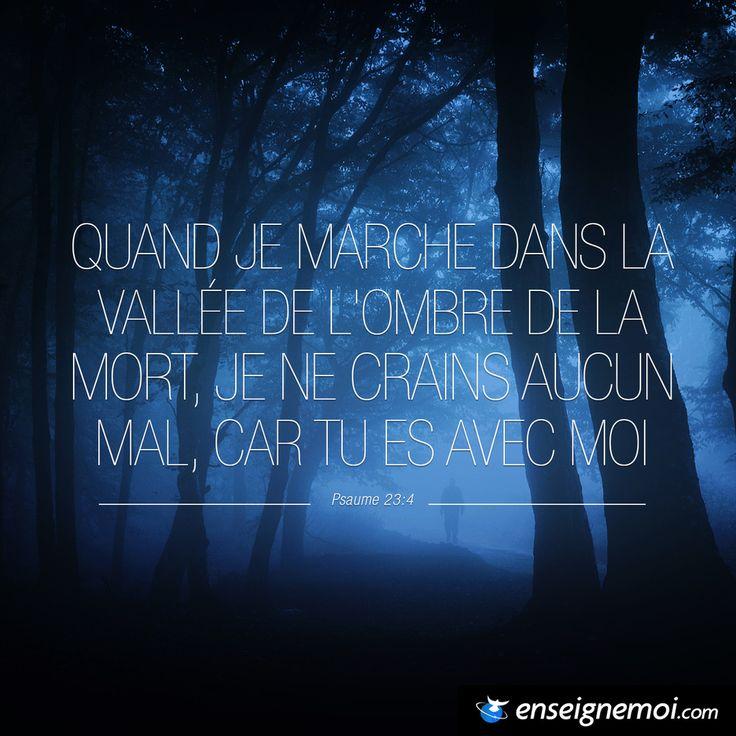 Psaumes 23:4 « Quand je marche dans la vallée de l'ombre de la mort, je ne crains aucun mal, car tu es avec moi »