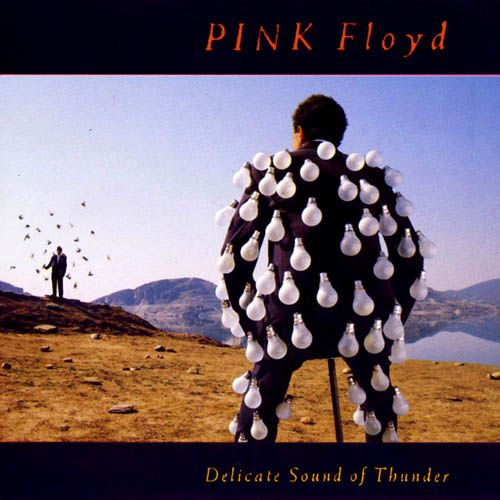delicate sound of thunder by pink floydMusic, Thunder, Album Covers, Floyd Delicate, Pinkfloyd, Pink Floyd, Storms Thorgerson, Delicate Sounds, Album Art
