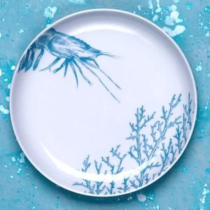 Porcelain dessert plate with hand drawn illustration of prawn and seaweed in turquoise.