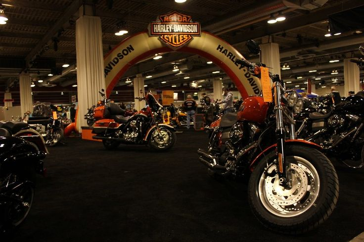 Motor Harley Davidson Cycles | motor harley davidson cycles, motor harley davidson cycles logo, motor harley davidson cycles logo vector, motor harley davidson cycles price, motor harley davidson cycles watch
