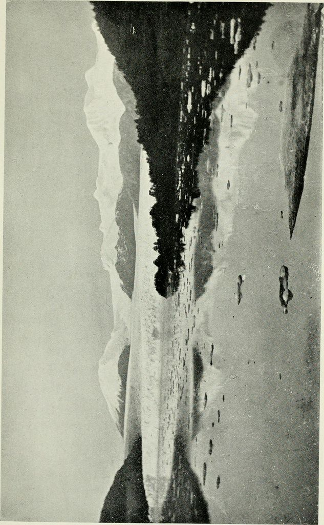 Identifier: ofpatagonia00skotwildsrich Title: The wilds of Patagonia; a narrative of the Swedish expedition to Patagonia, Tierra del Fuego and the Falkland Islands in 1907-1909 Year: 1911 (1910s) Authors:  Skottsberg, Carl, 1880-1963 Subjects:  Patagonia (Argentina and Chile) -- Description and travel Tierra del Fuego (Argentina and Chile) -- Description and travel Falkland Islands -- Description and travel Publisher:  London : E. Arnold Contributing Library:  University of California…