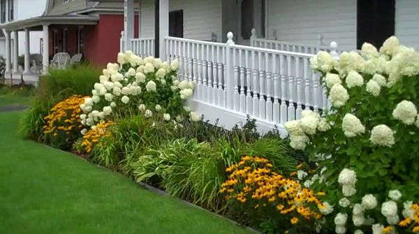 good corner bushes - Google Search | Foundation planting