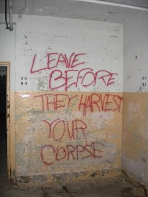 Do this but in fake blood on the basement wall.  Be great for a haunted house.
