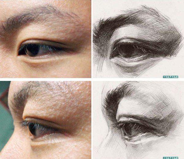 82 best Eyes anatomy images on Pinterest | Human anatomy ...