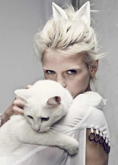 ana no mundo dos sonhos: inspiração em branco 2: White Hair, Cat Fashion, Kitty Cat, Fashion Photography, Whitecat, Cat Ears, Snow White, Cat Lady, White Cat