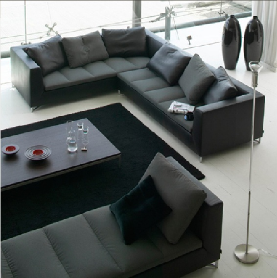 Ligne Roset Feng   Great Couch