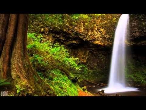 [Progressive House] Lunek - The Beat (Oryginal Mix) - YouTube