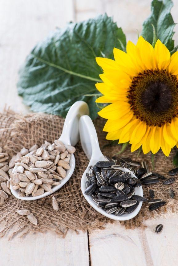 Sunflower seeds/Chicken Salad Recipe