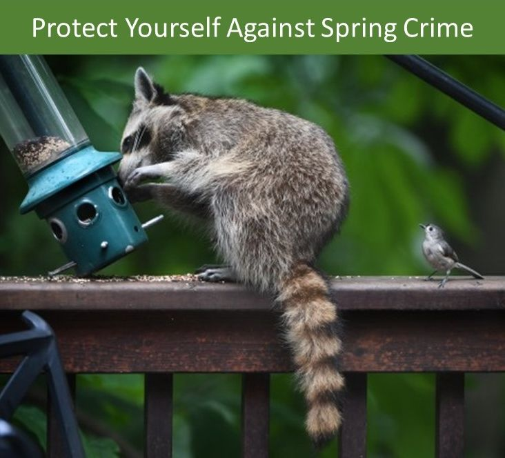 Now that spring is here, it's important to take the time to protect your business against spring crimes. These spring security tips will help.
