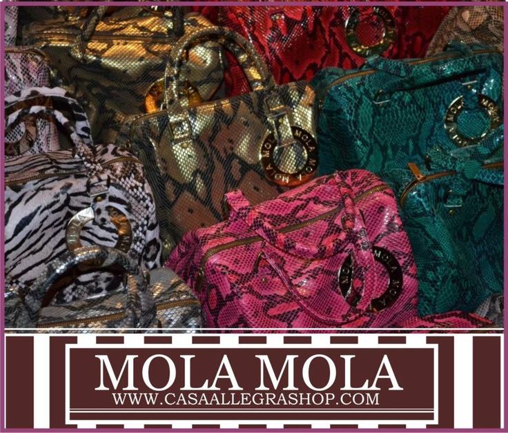 http://www.facebook.com/CasaAllegra    MOLA MOLA EN CALI , COLOMBIA.