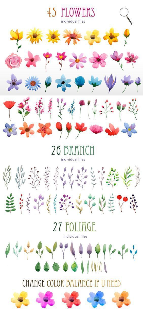 Photo of DIY paper poppy background and pin flower examples for painting. Watercolor elements. Cre …
