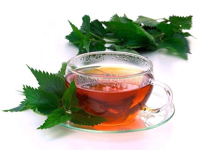 cisteni krve detoxikace byliny bylinky babske rady