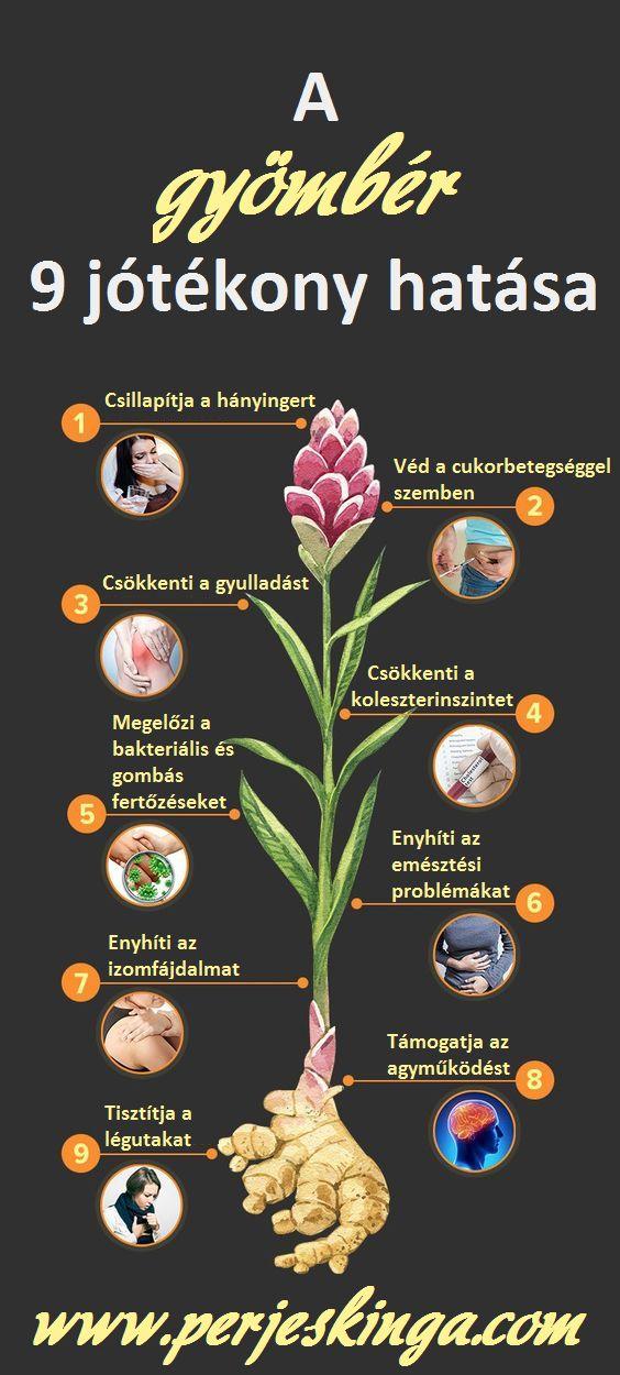 A gyömbér 9 jótékony hatása || www.perjeskinga.com