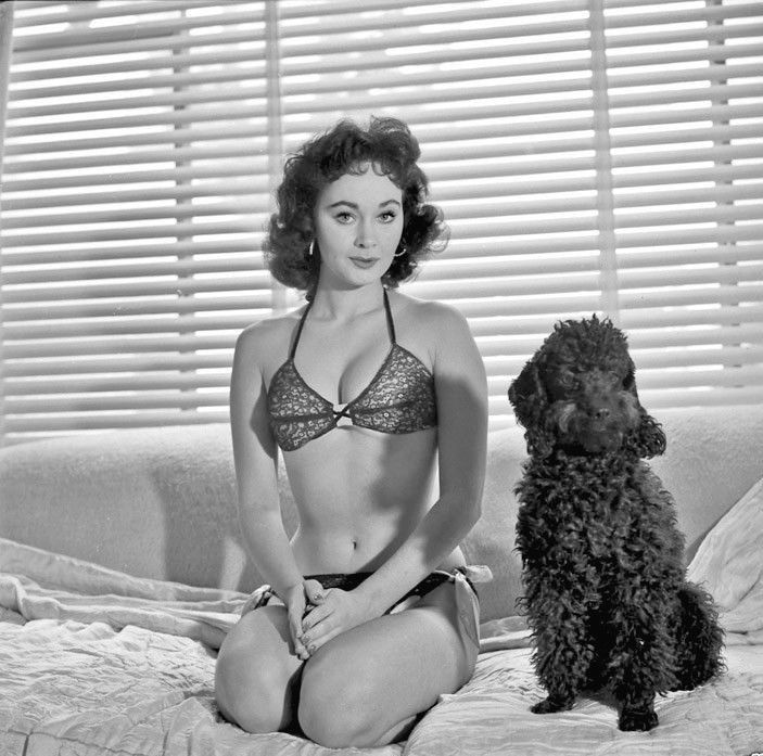 Marla English, early 1950's (703×697) | VintageBabes | Pinterest | English, Famous women and ...