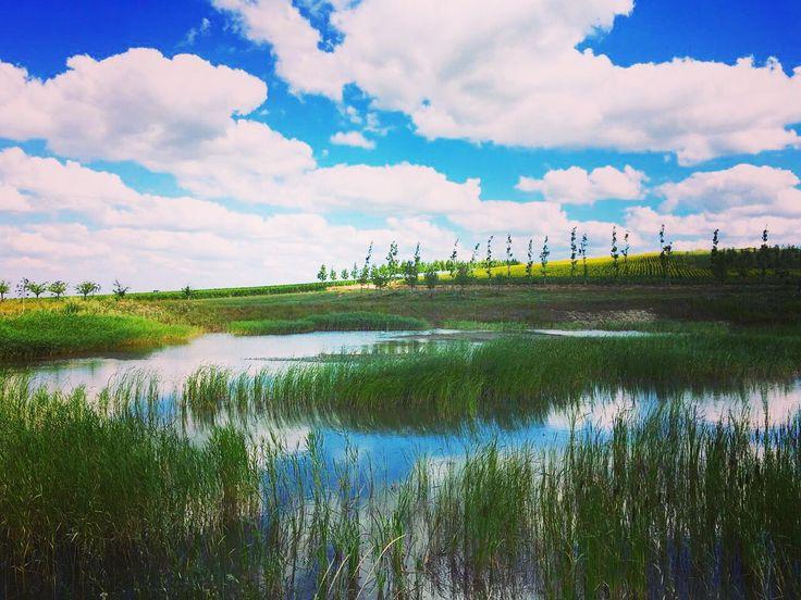 Помимо красивейшего озера Гечепсин, на территории долины Лефкадия есть множество небольших озёр. Их берега станут отличным местом отдыха для тех, кто устал от летнего зноя и хочет расслабиться под тихие звуки природы.