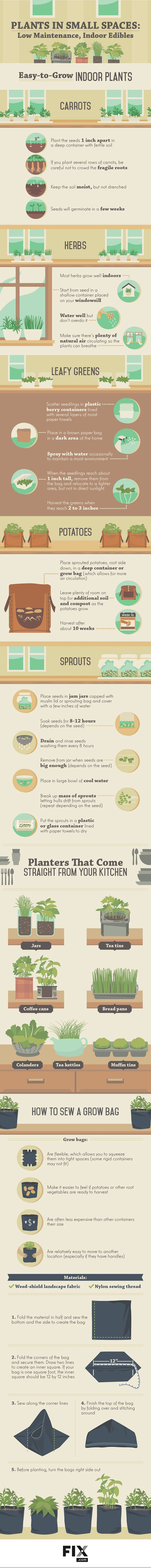 Plants in Small Spaces #Infographic #Plants #Indoor