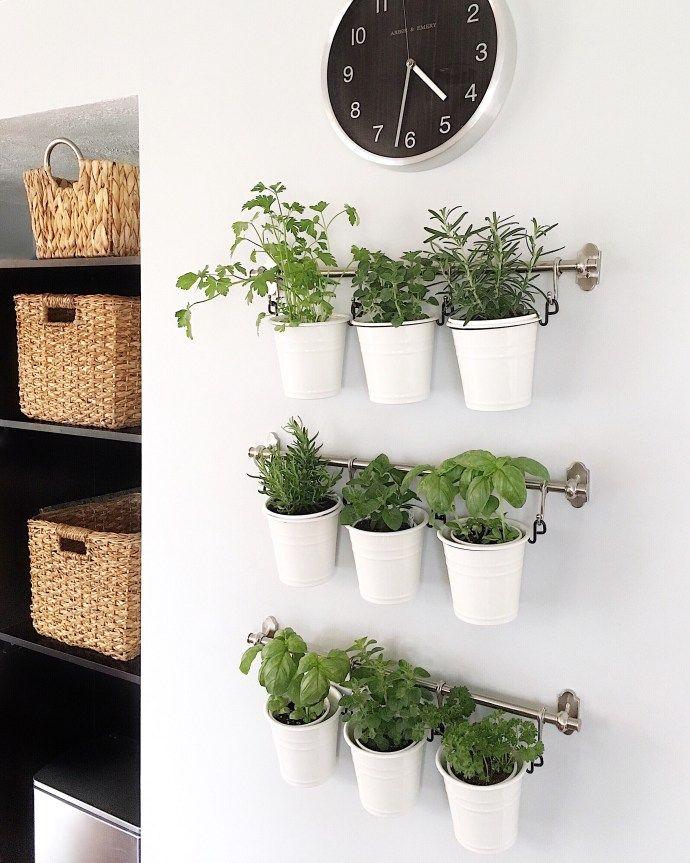 Hanging IKEA herb garden | Indoor herb garden, Diy herb ...