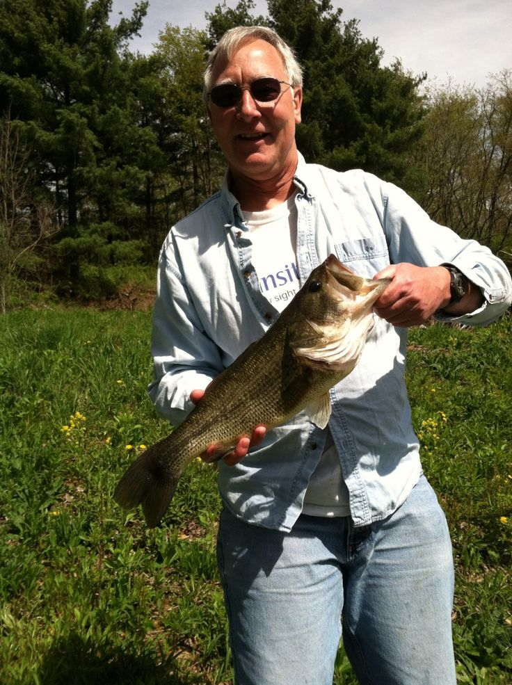 17 best images about tips to catch northeast ohio bass on for Pond fishing tips