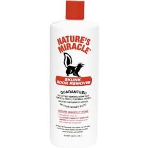 15+ best ideas about Skunk Smell Remover on Pinterest ...