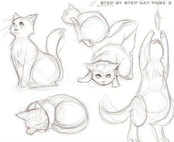 Lustige Katzen: Wie zeichnet man eine Katze?