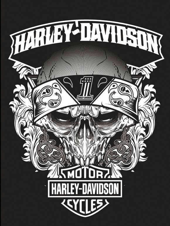 Harley Davidson MotorCycles  Free Pinterest Perfection E-book (Make Money)  http://pinterestperfection.gr8.com/