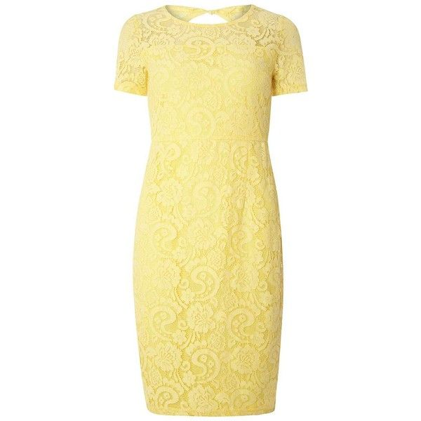 Dorothy Perkins Lemon Scallop Pencil Dress (£55) ❤ liked on Polyvore featuring dresses, yellow, scalloped lace dress, short sleeve dress, lemon yellow dress, lace pencil dress and beige dress