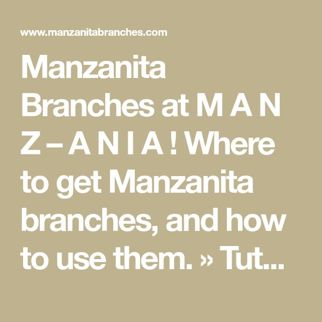 Manzanita Branches at M A N Z – A N I A ! Where to get Manzanita branches, and how to use them. » Tutorial: Manzanita Wedding Trees/Centerpieces