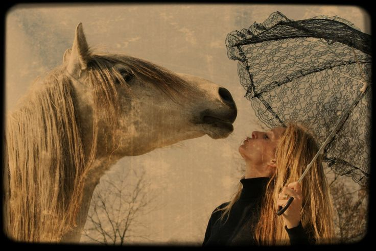 Horsepicture www.maaikedekkersphotography.nl
